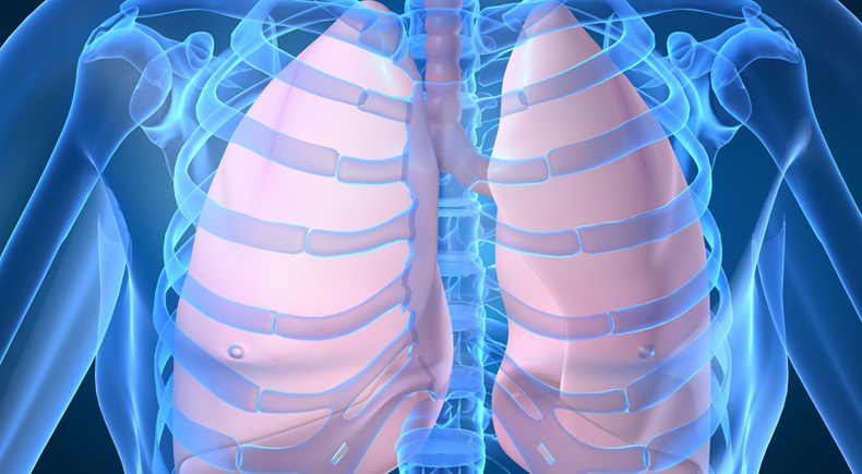 Natural Remedies to Clean and Strengthen Your Lungs