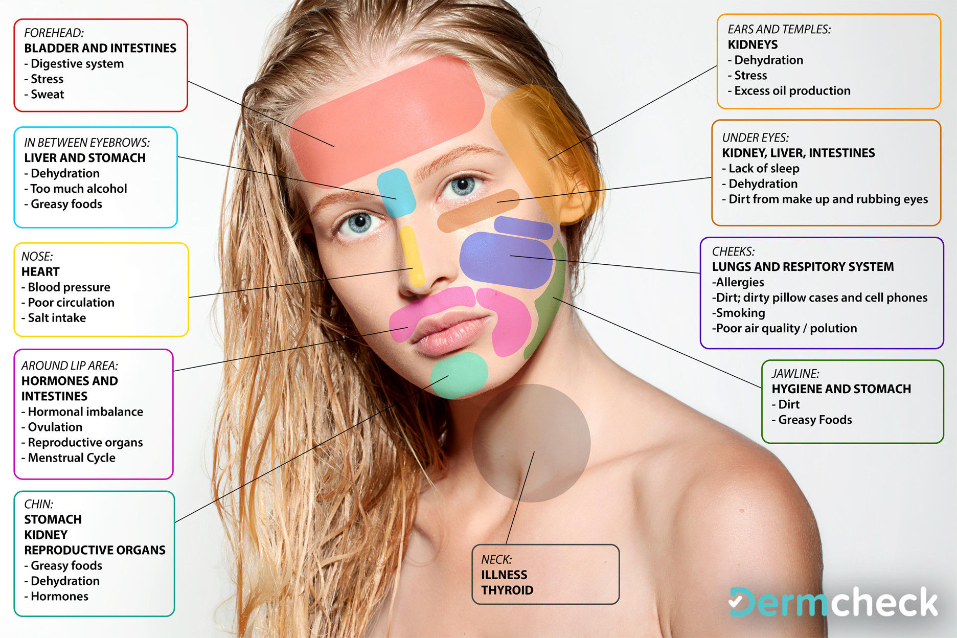 Chinese Face Map Reveals What Part Of Your Body Is Sick And How To Fight It