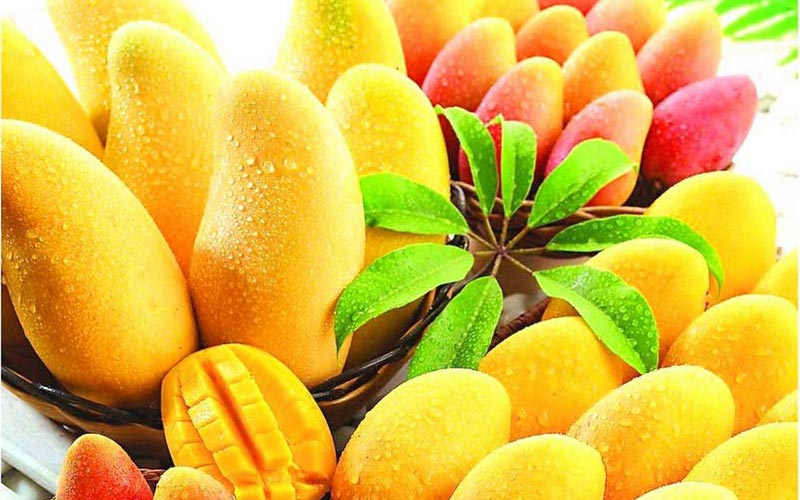 6 reasons you must include mangoes in your beauty regime